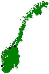 Kart over Din Naprapat - Trondheim - Kristiansund - Haugesund - Karmøy - Ølen